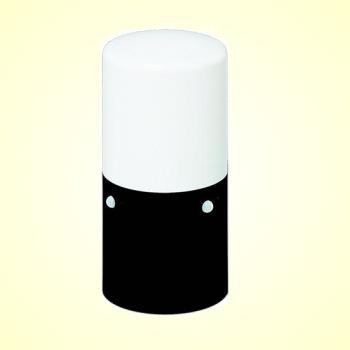 アイリスオーヤマ ガーデンセンサーライトスリム LSL-MS1 ブラック