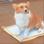 アイリスオーヤマ おでかけ犬トイレ ワイドサイズ ODT-W