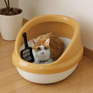 アイリスオーヤマ ネコのトイレ ハーフカバー 三毛 P-NE-500-H