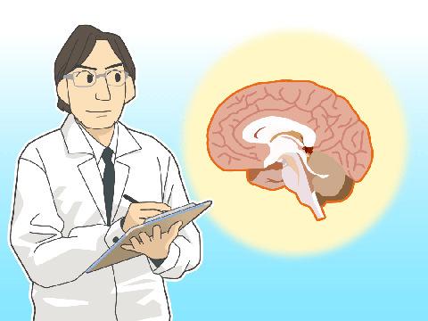 脳科学調査