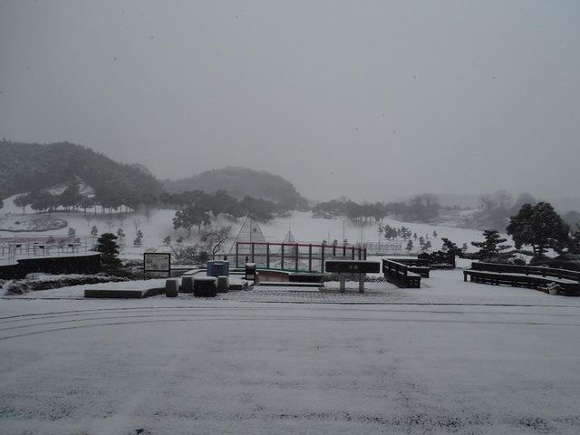 1995年以来の豪雪