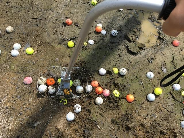 池のボール拾い