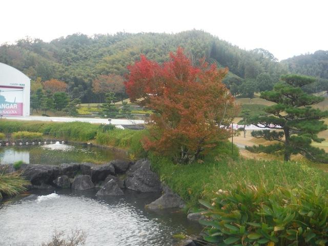 秋の紅葉風景!