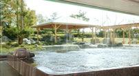 天然温泉を楽しむ