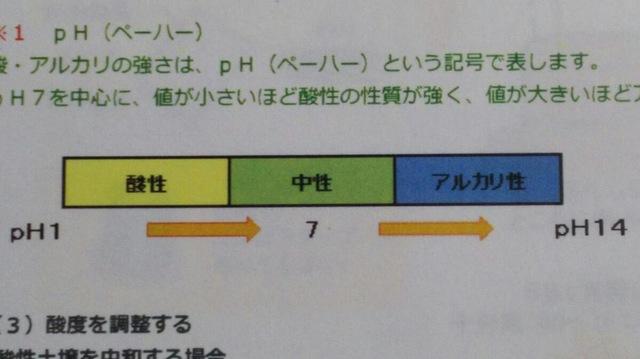 野菜栽培について 〜土作り編②〜