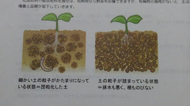 野菜栽培について 〜土作り編③〜