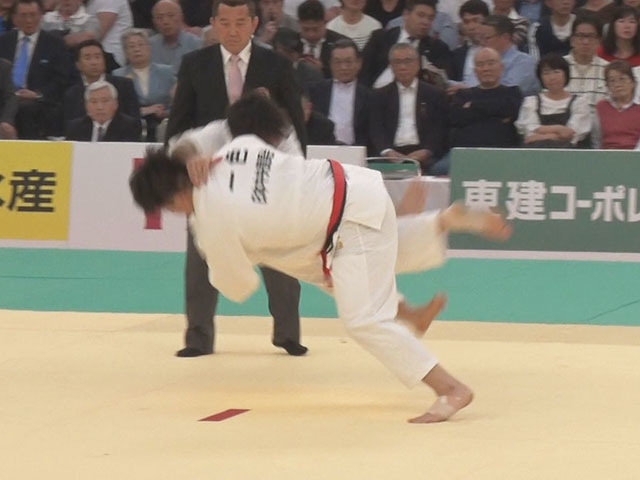 日本中央競馬会・一色