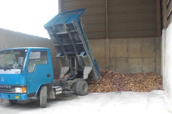 落ち葉の再利用