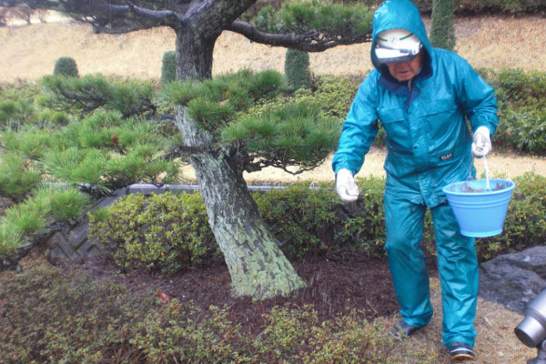 樹木への施肥