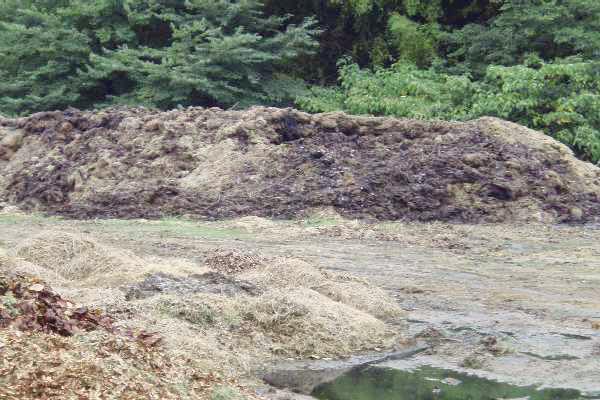 堆肥を作っています