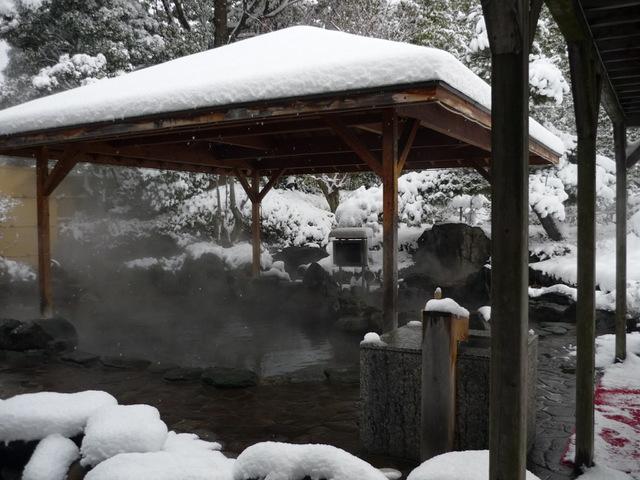 夜の冬景色・露天風呂パートⅡ