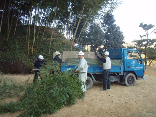 竹林の整備