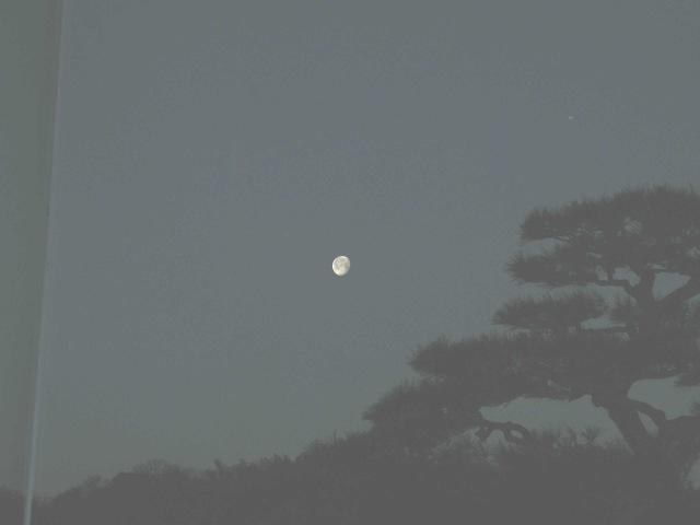 "3月の月光"""