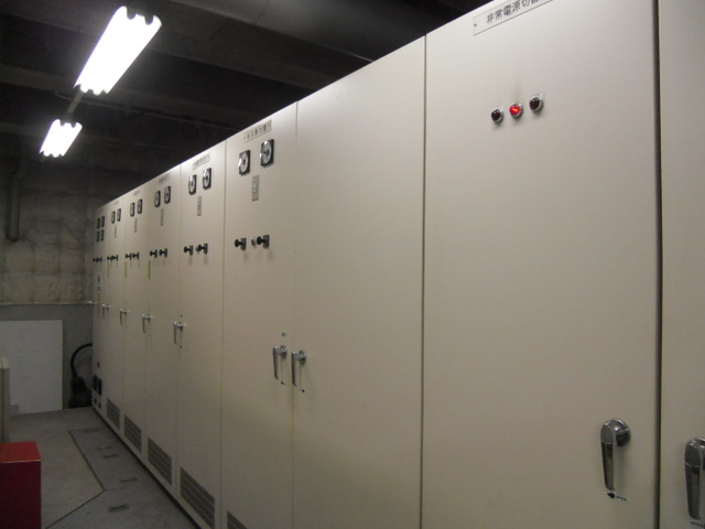 private power generation