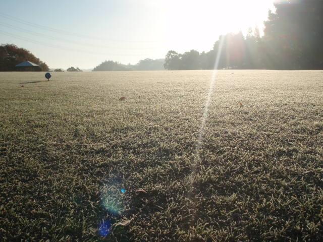 冬の朝の光景 〜霜〜