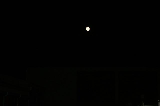 中秋の名月に想う