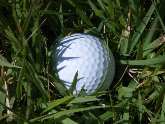 球の捜索と確認