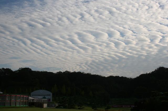 うろこ雲に秋を想う