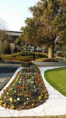 クラブハウス前の花壇