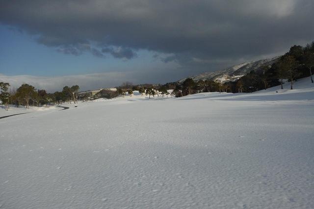 今冬最後の雪!?