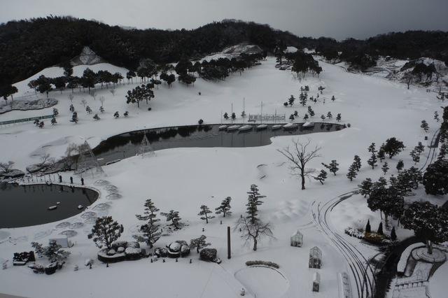 今年初の積雪です。