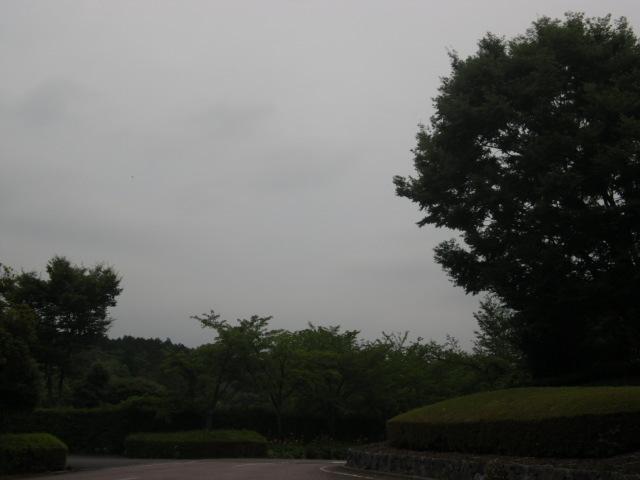 梅雨真っ只中!