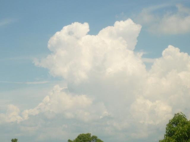 夏真っ盛りです!落雷に注意!