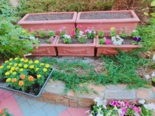 花壇の植栽をしました!