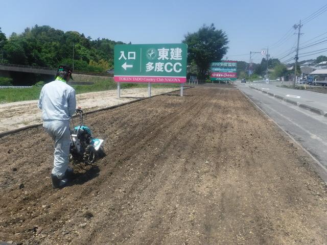 一年草花壇の土壌改良