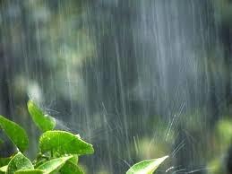 台風の季節です。