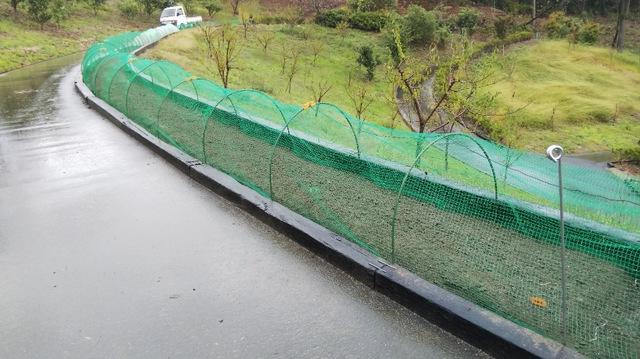 秋〜冬野菜の植え付け・種蒔き 作業完了♪④
