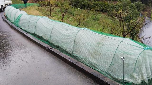 秋〜冬野菜の植え付け・種蒔き 作業完了♪⑤